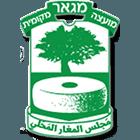 לוגו מועצה מג'אר